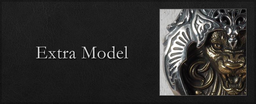 Extra Model