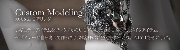 Custom Modeling